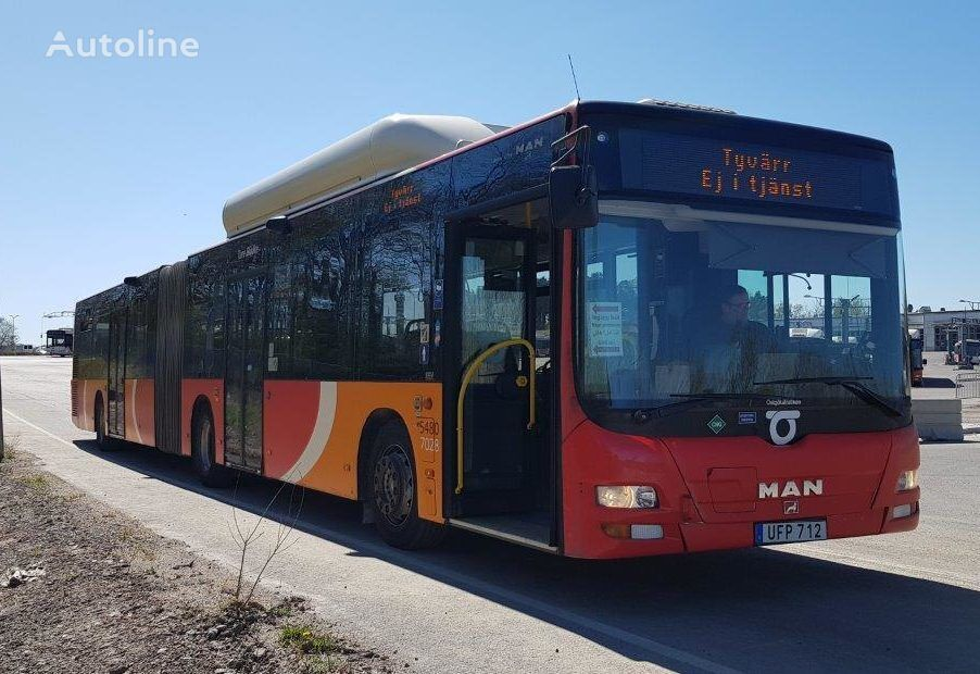 MAN A23 CNG  articulated bus
