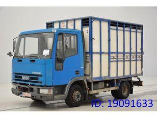 IVECO 65E14 livestock truck