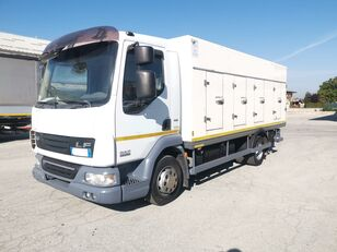 DAF 45.220 SURGELATI ATP 10/2024 - 120QLI refrigerated truck